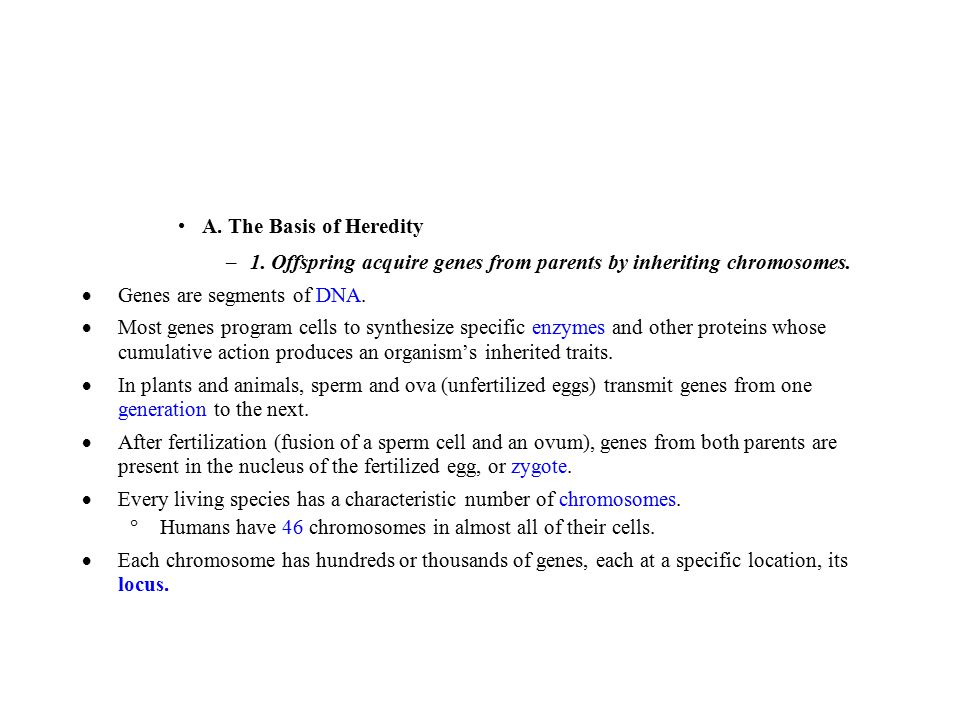 A. The Basis of Heredity 1. Offspring acquire genes from parents by inheriting chromosomes.  Genes are segments of DNA.