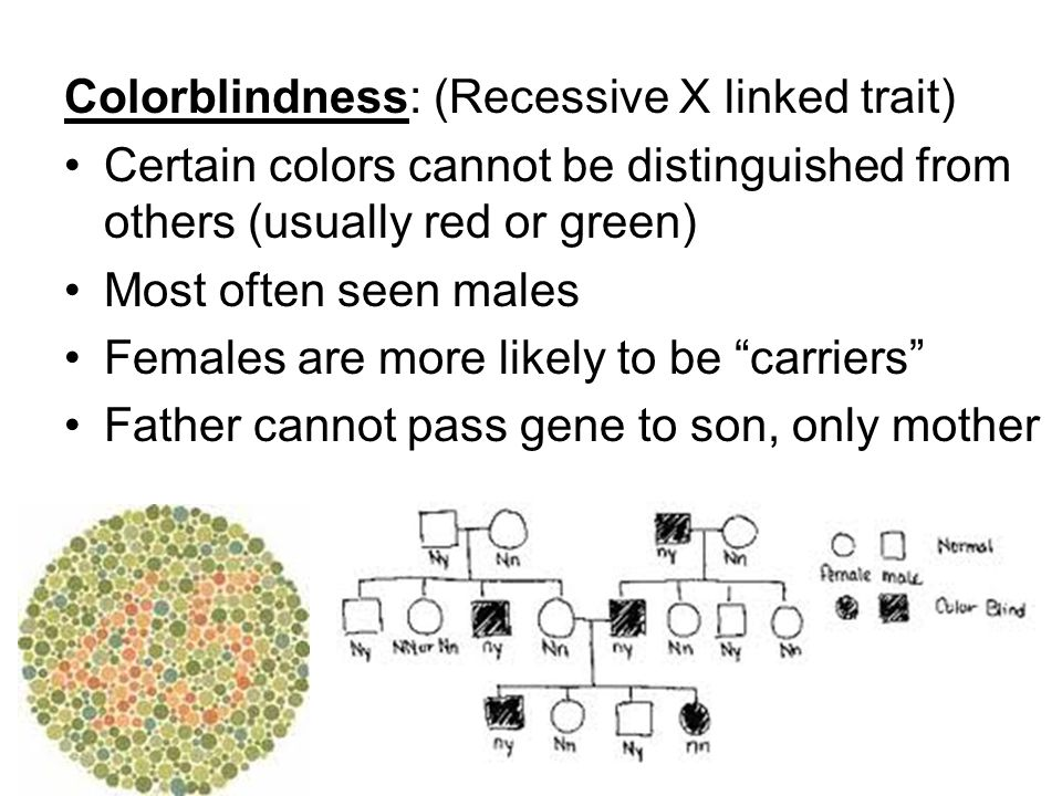 Colorblindness: (Recessive X linked trait)
