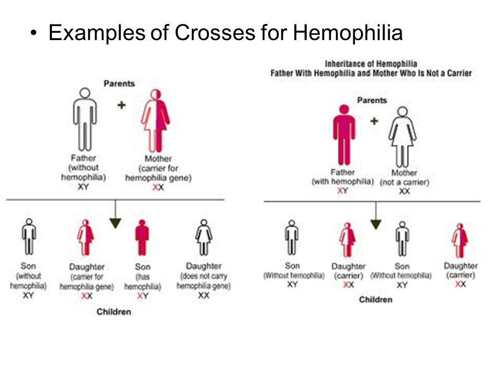Examples of Crosses for Hemophilia