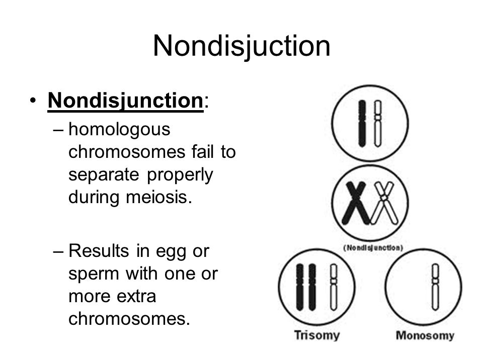 Nondisjuction Nondisjunction: