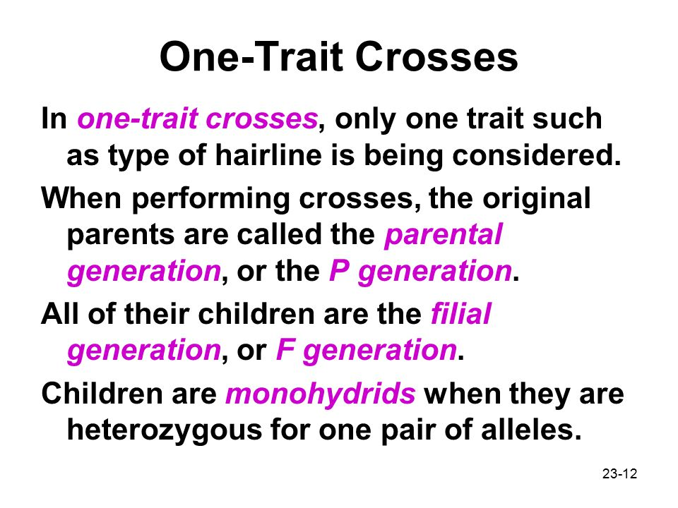 One-Trait Crosses In one-trait crosses, only one trait such as type of hairline is being considered.