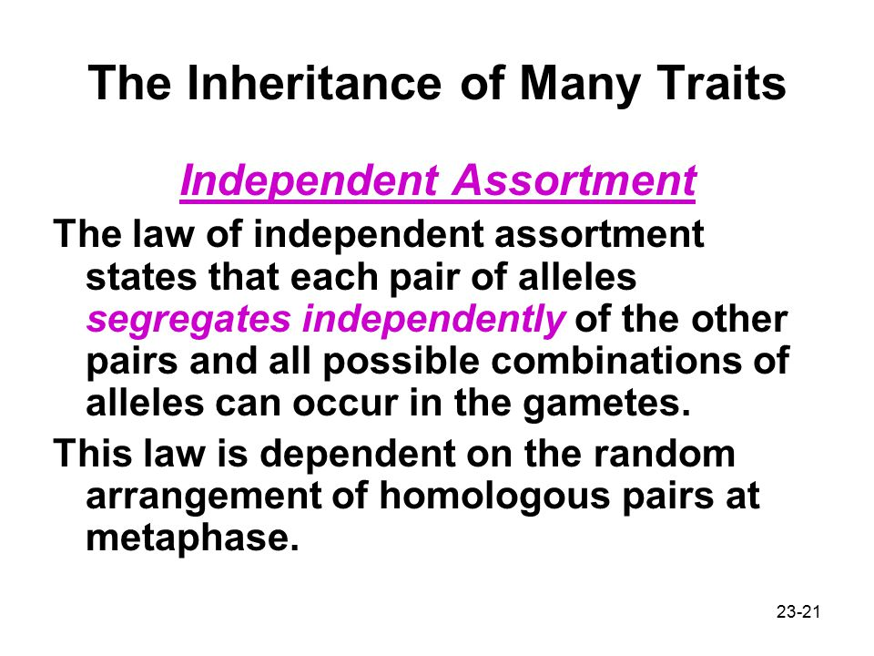 The Inheritance of Many Traits