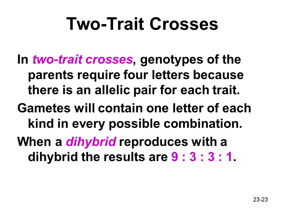 Two-Trait Crosses In two-trait crosses, genotypes of the parents require four letters because there is an allelic pair for each trait.