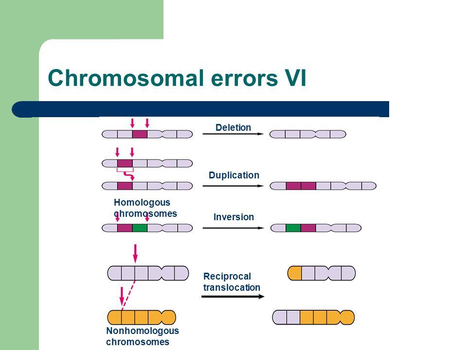 Chromosomal errors VI Deletion Duplication Homologous chromosomes