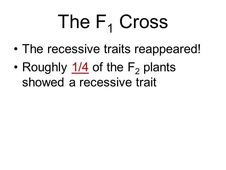 The F1 Cross The recessive traits reappeared!