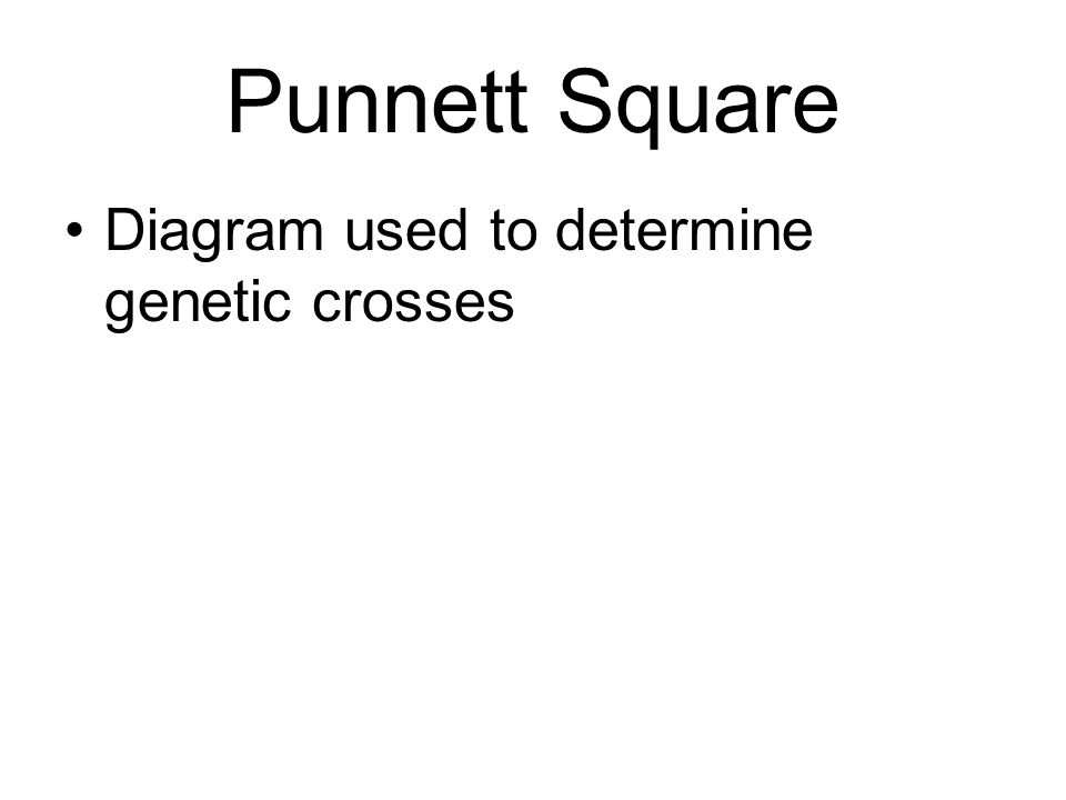Punnett Square Diagram used to determine genetic crosses