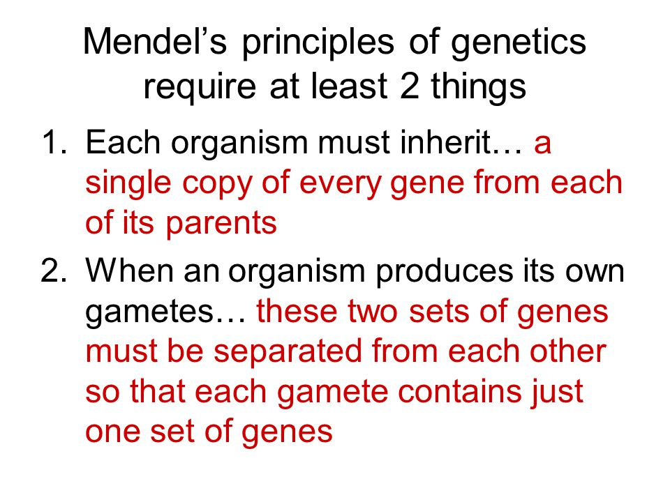 Mendel's principles of genetics require at least 2 things