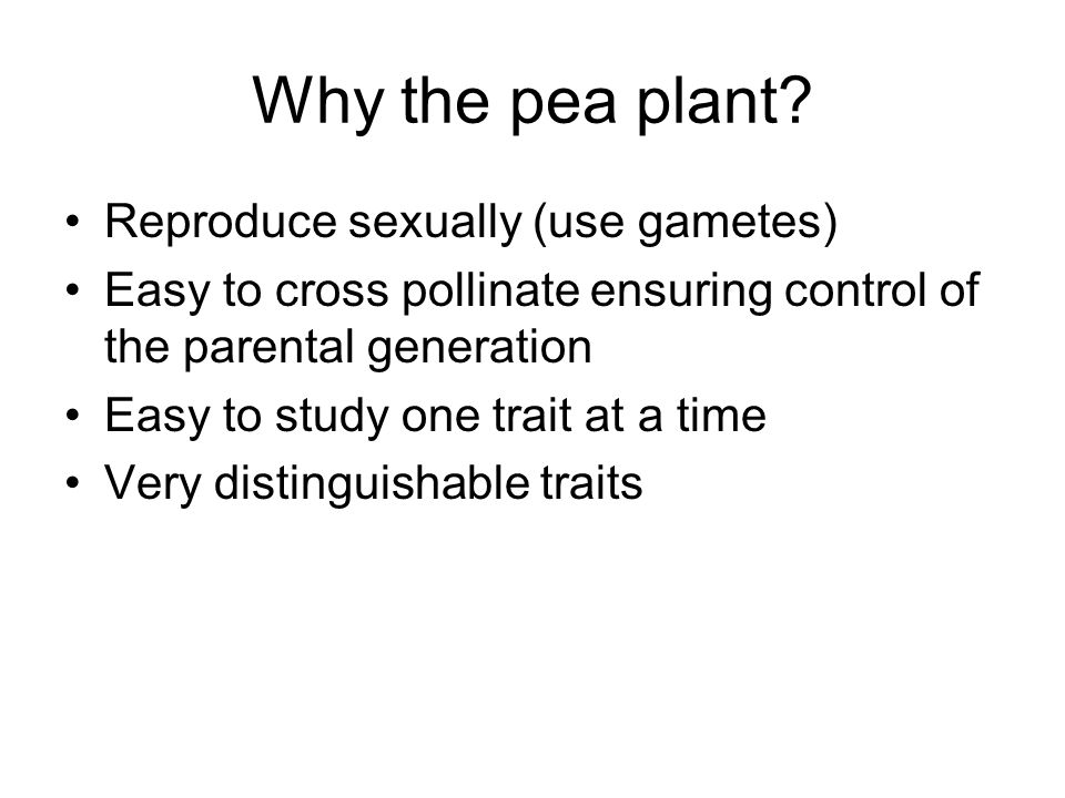 Why the pea plant Reproduce sexually (use gametes)