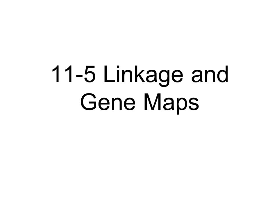 11-5 Linkage and Gene Maps