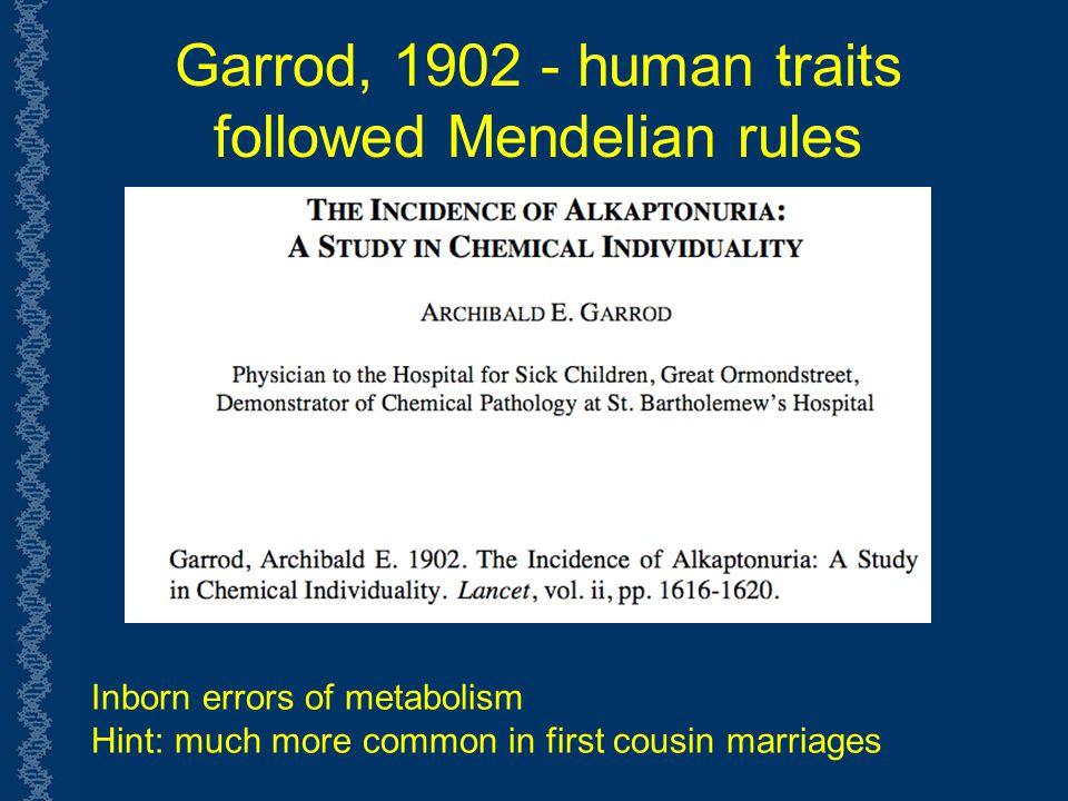 Garrod, 1902 - human traits followed Mendelian rules