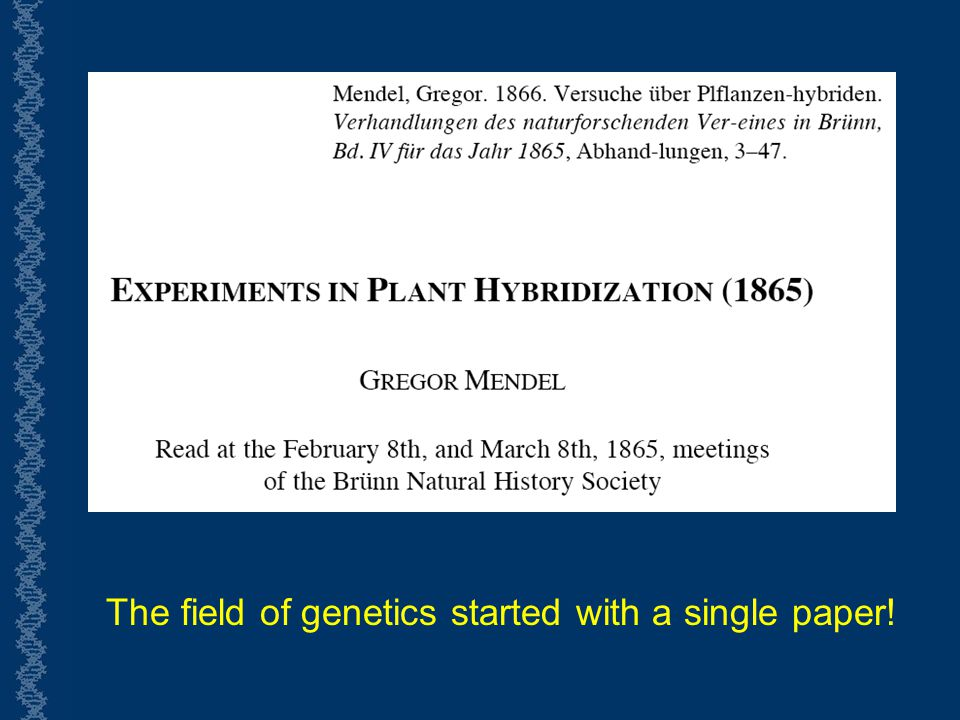 The field of genetics started with a single paper!