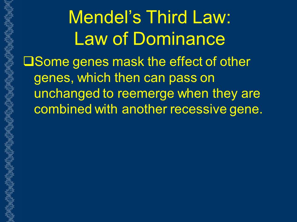 Mendel's Third Law: Law of Dominance