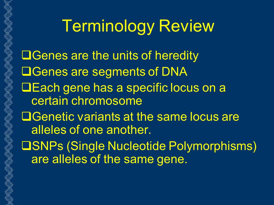 Terminology Review Genes are the units of heredity