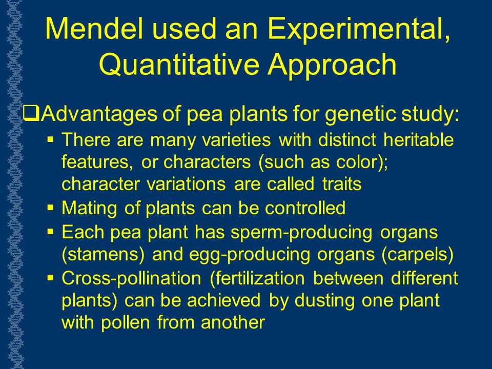 Mendel used an Experimental, Quantitative Approach