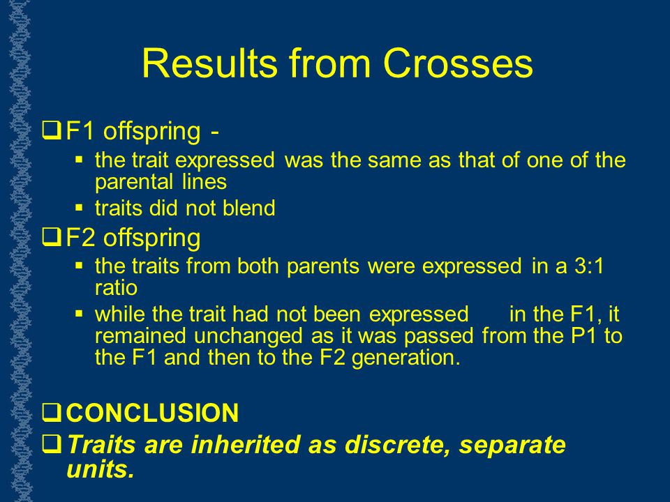 Results from Crosses F1 offspring - F2 offspring CONCLUSION