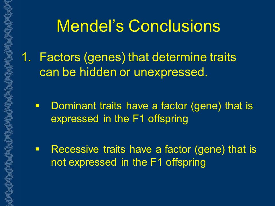 Mendel's Conclusions Factors (genes) that determine traits can be hidden or unexpressed.