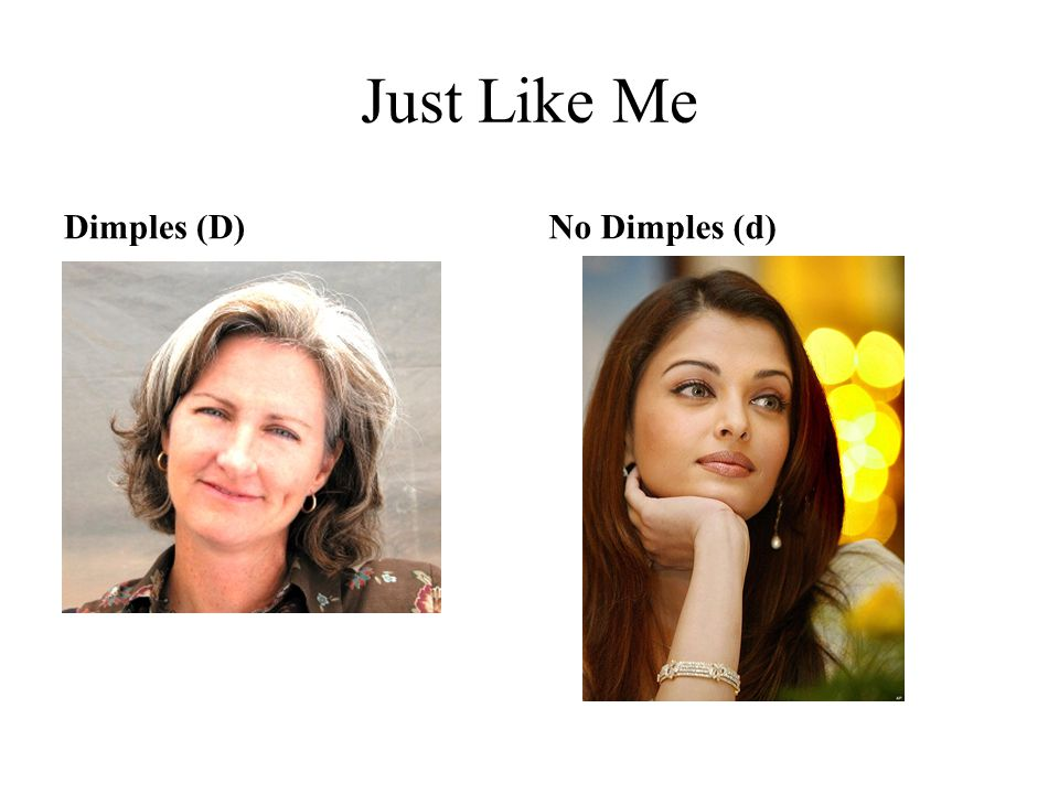 Just Like Me Dimples (D) No Dimples (d)