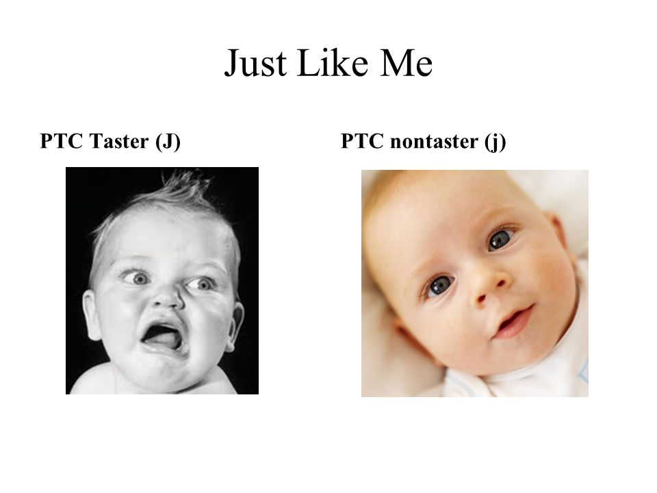 Just Like Me PTC Taster (J) PTC nontaster (j)