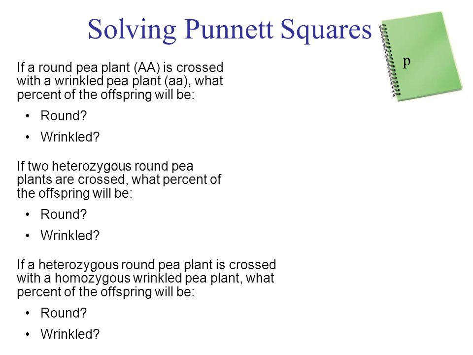 Solving Punnett Squares :