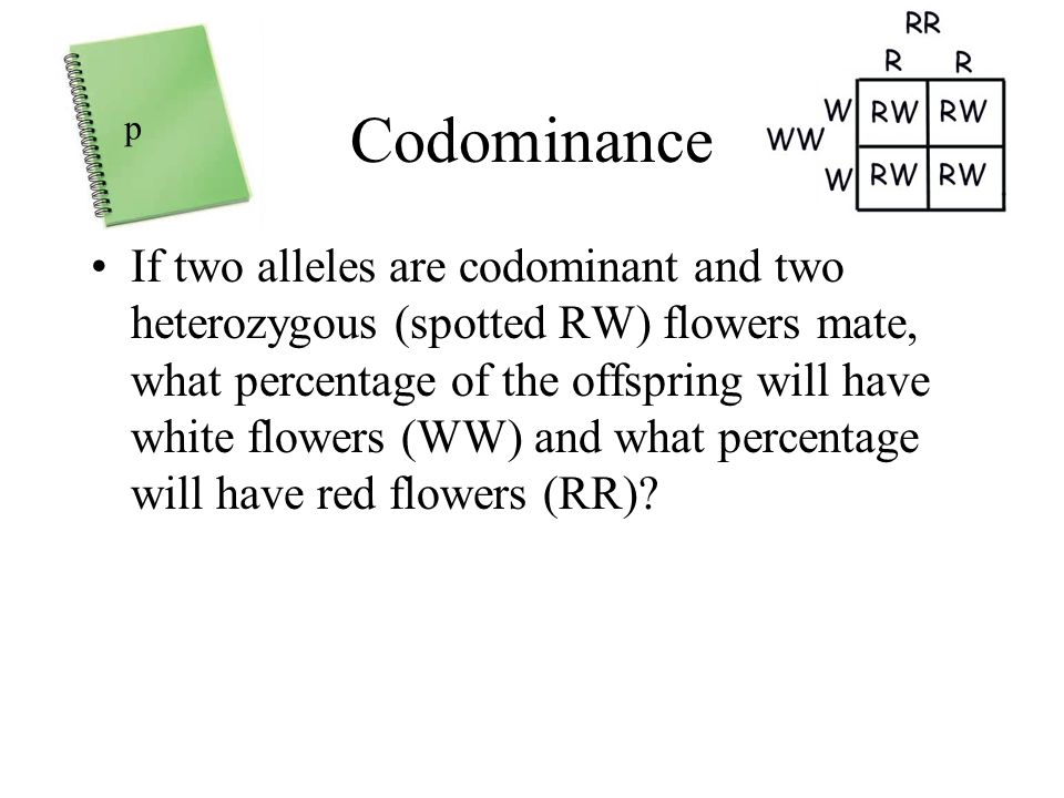 Codominance p.