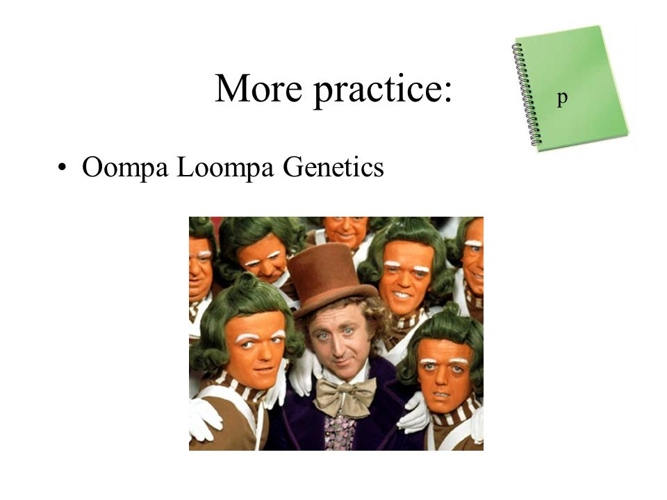 How do traits pass from parents to offspring ppt download – Oompa Loompa Genetics Worksheet Answer Key