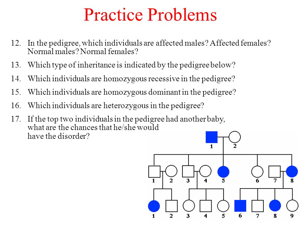 How to Use WAMAP Practice Problems - induced.info