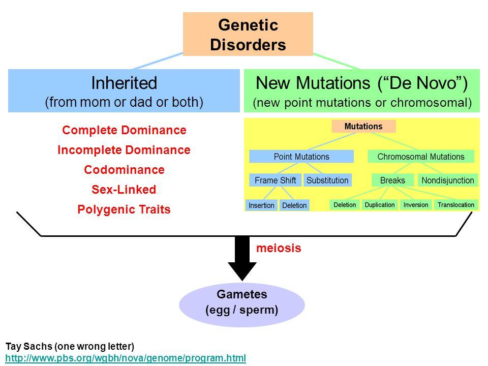 New Mutations ( De Novo )