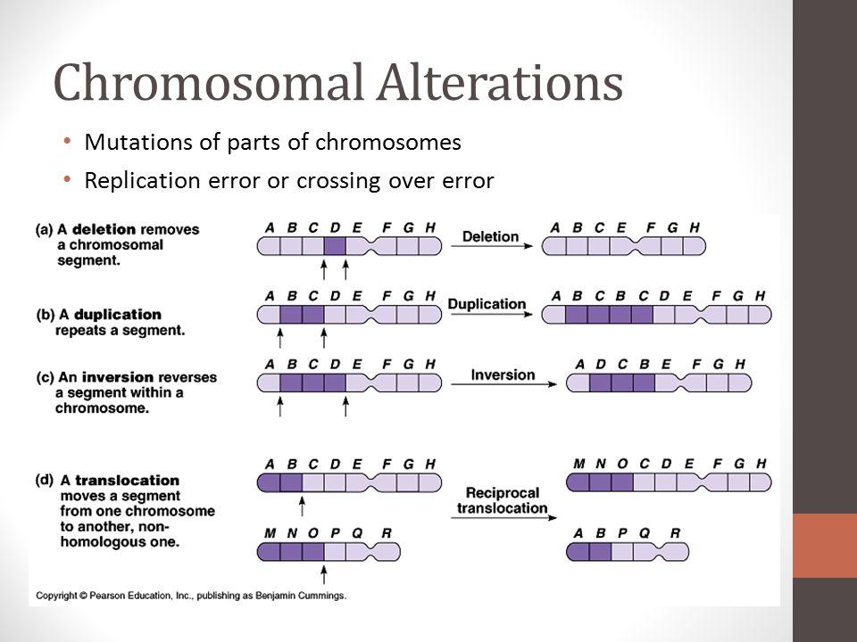 Chromosomal Alterations