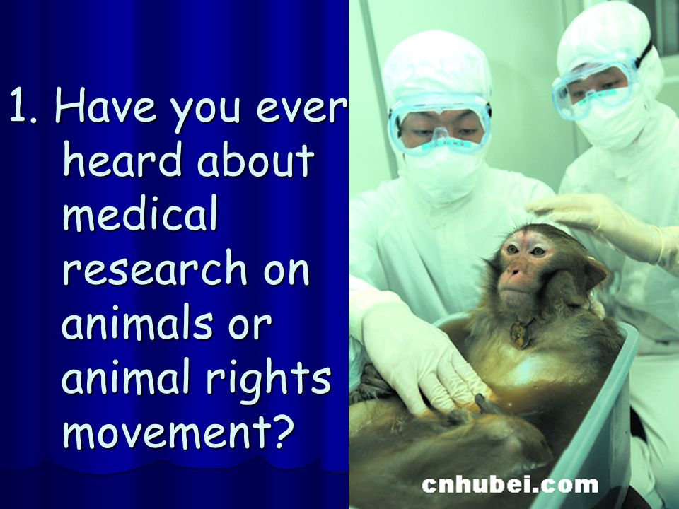 1. Have you ever heard about medical research on animals or animal rights movement