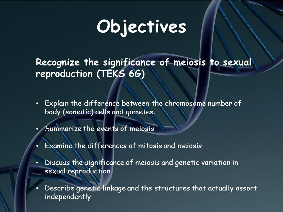 Objectives Recognize the significance of meiosis to sexual reproduction (TEKS 6G)