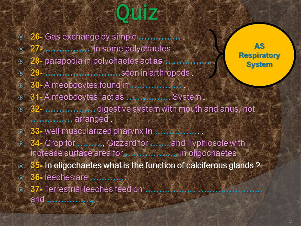 Quiz 26- Gas exchange by simple …………… .