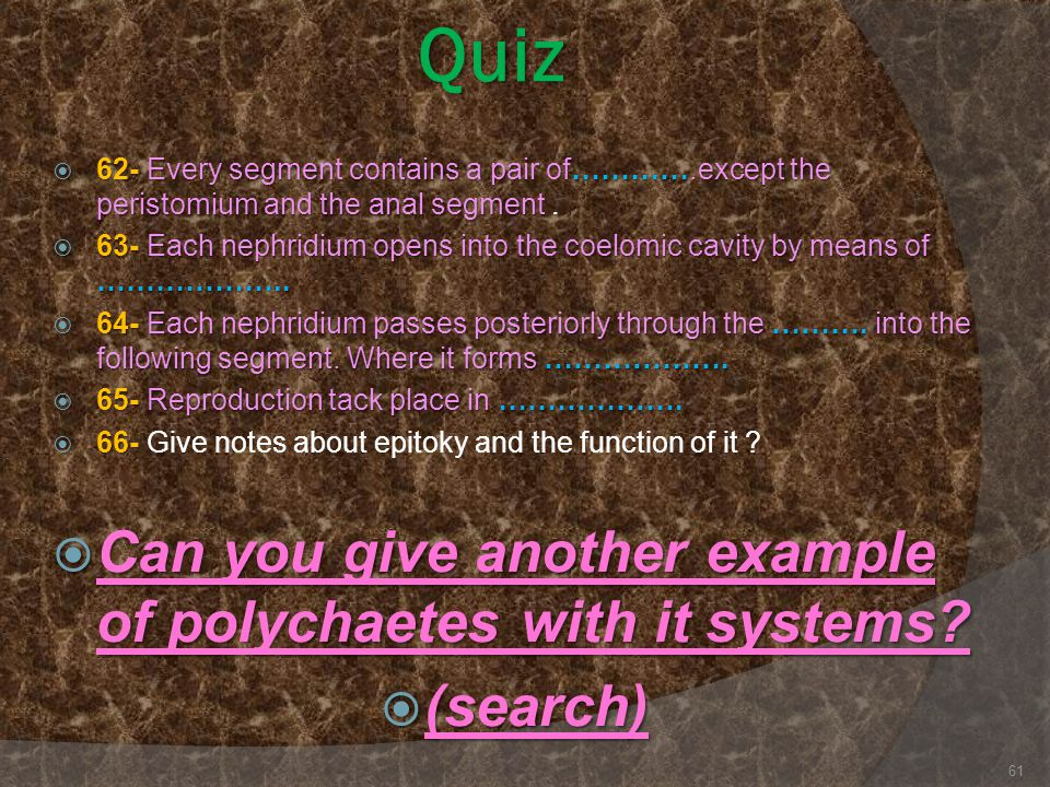 Quiz Can you give another example of polychaetes with it systems