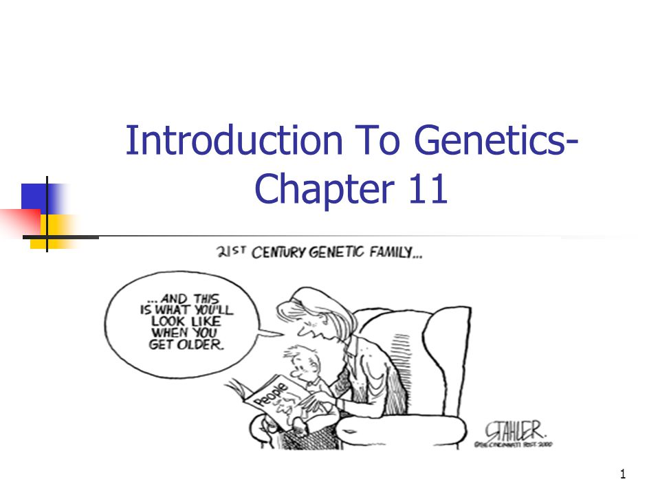 Introduction To Genetics- Chapter 11
