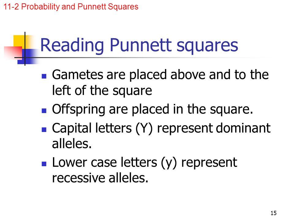 Reading Punnett squares