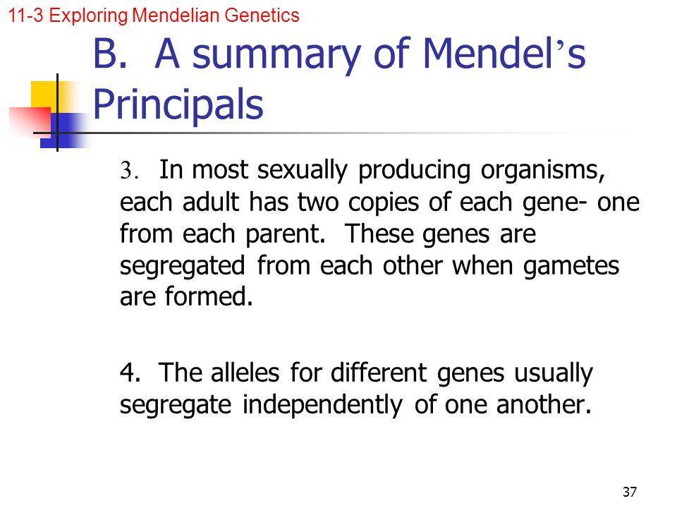 B. A summary of Mendel's Principals