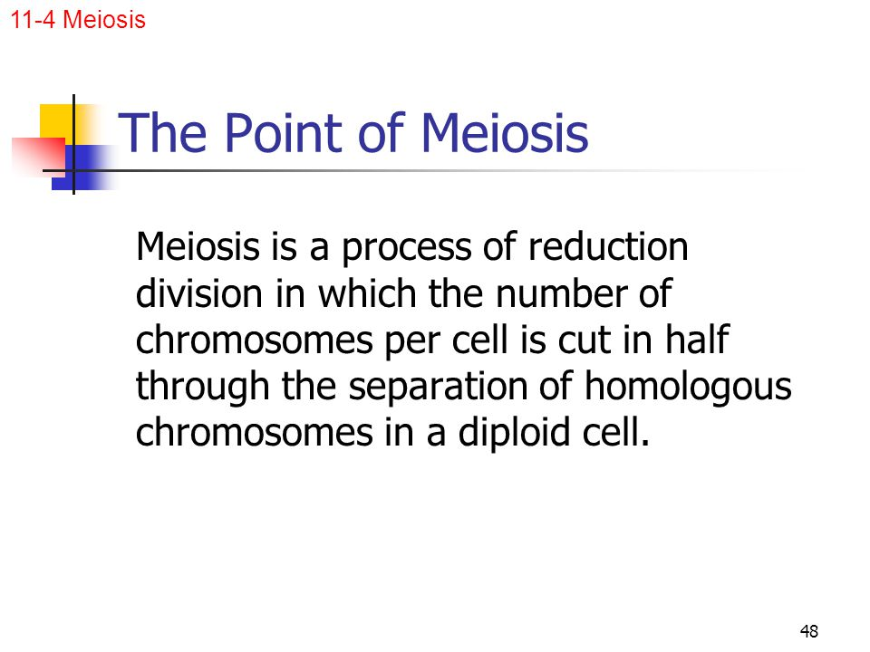 11-4 Meiosis The Point of Meiosis.