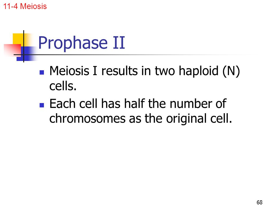 Prophase II Meiosis I results in two haploid (N) cells.