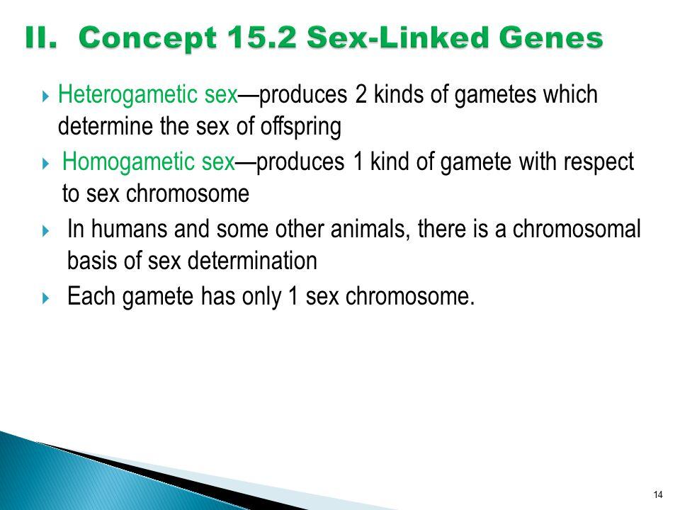 II. Concept 15.2 Sex-Linked Genes