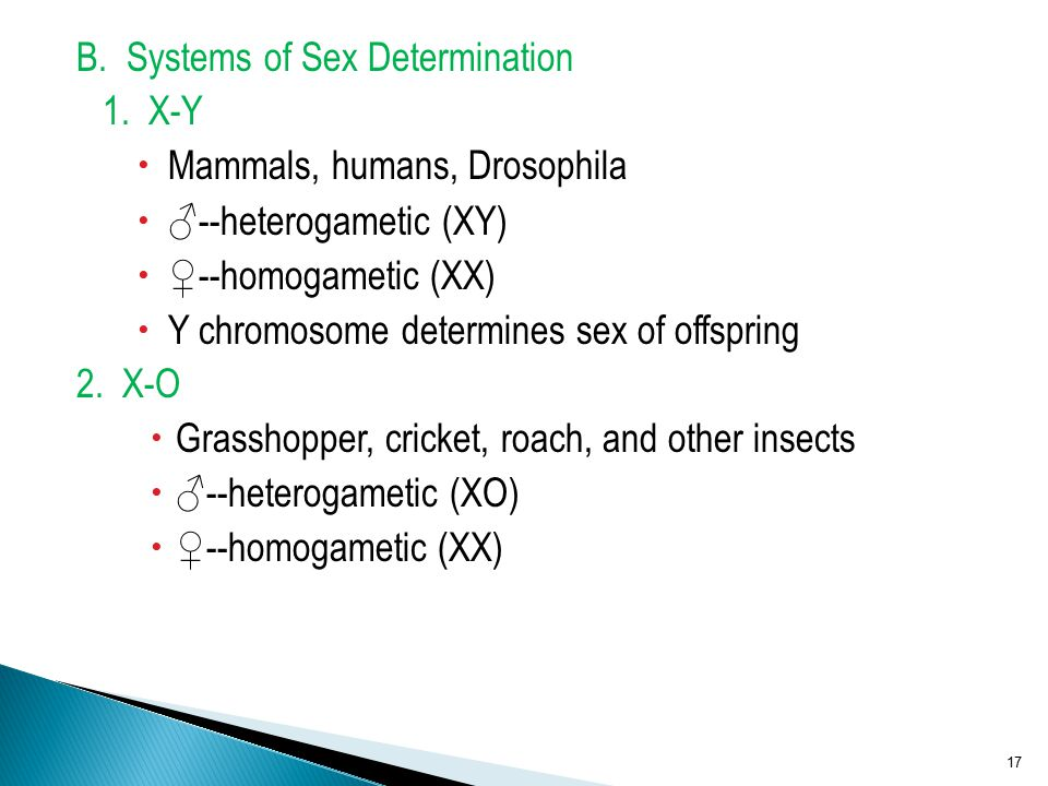 B. Systems of Sex Determination