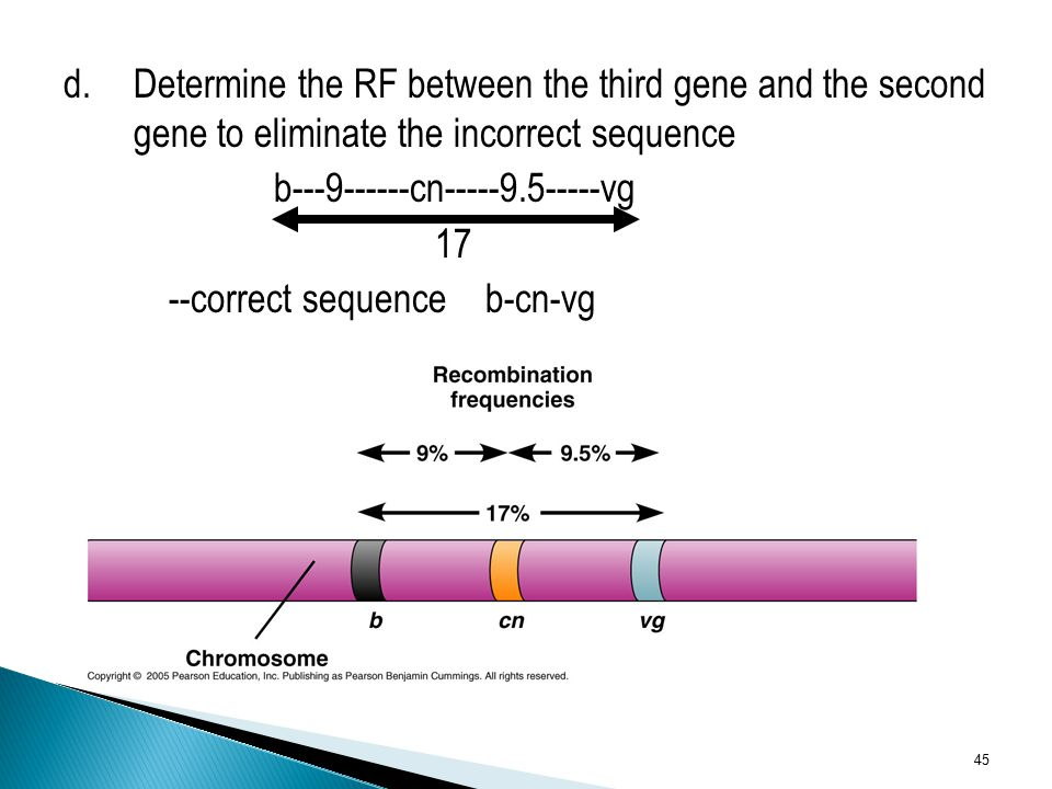 d. Determine the RF between the third gene and the second gene to eliminate the incorrect sequence