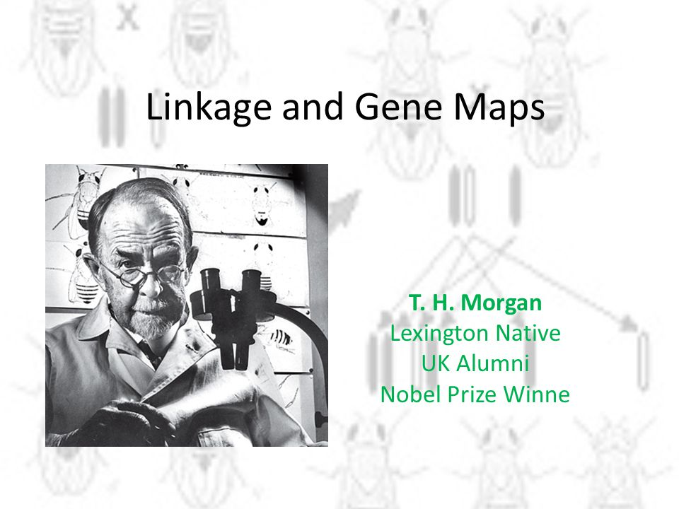 T. H. Morgan Lexington Native UK Alumni Nobel Prize Winne