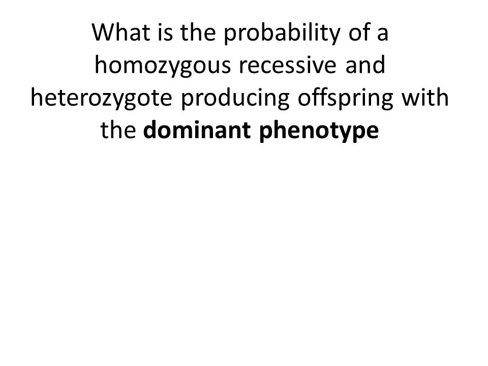 What is the probability of a homozygous recessive and heterozygote producing offspring with the dominant phenotype