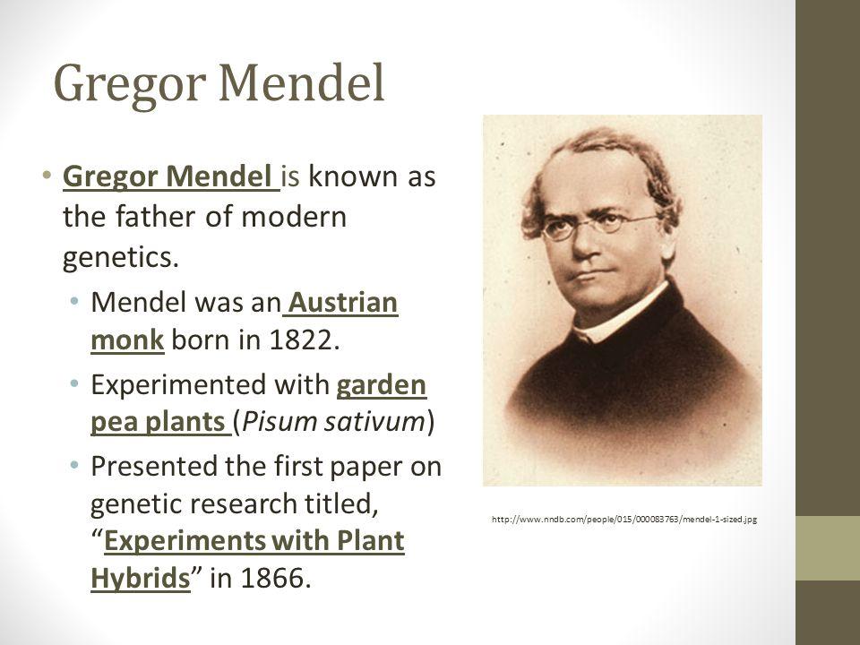 Gregor Mendel Gregor Mendel is known as the father of modern genetics.