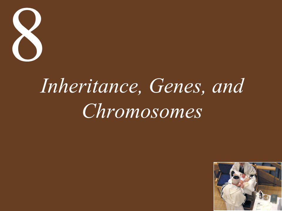 Inheritance, Genes, and Chromosomes