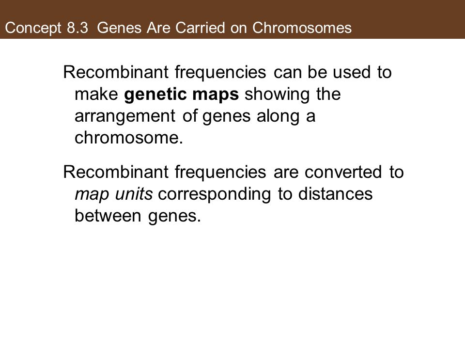 Concept 8.3 Genes Are Carried on Chromosomes