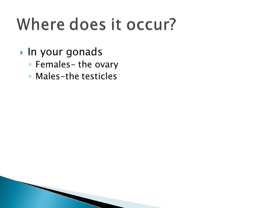 Where does it occur In your gonads Females- the ovary