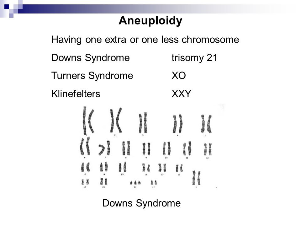 Aneuploidy Having one extra or one less chromosome