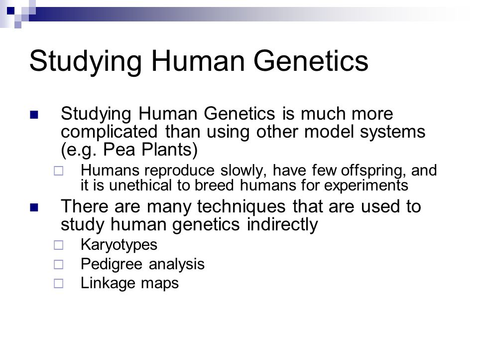 an introduction to the analysis of the human genes xx and xy