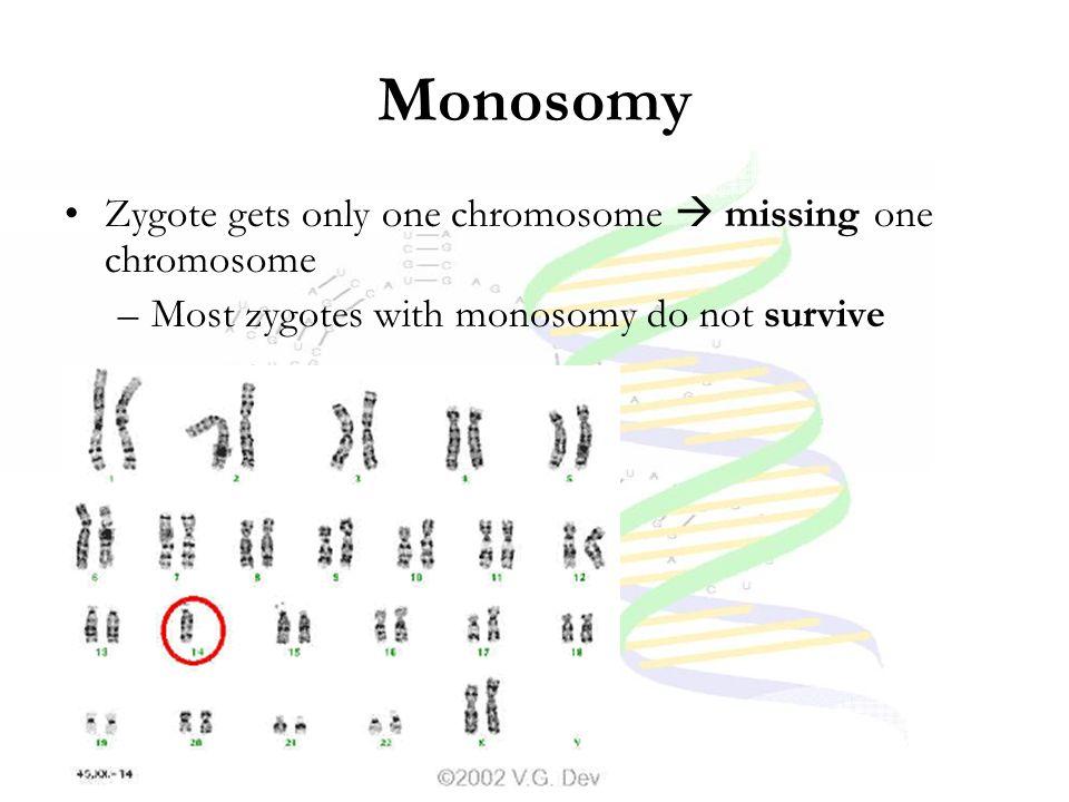 Monosomy Zygote gets only one chromosome  missing one chromosome