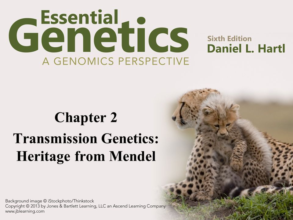 Chapter 2 Transmission Genetics: Heritage from Mendel
